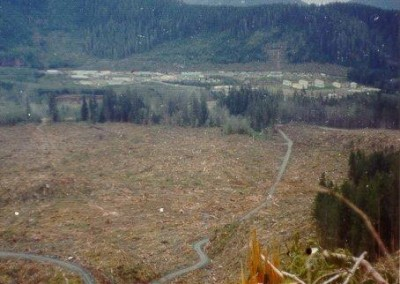 The domestic site and the lower switchback after logging the area - May 1974