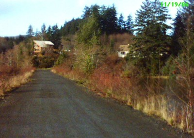 Looking back from the Holberg Dock, towards the town site (2006).