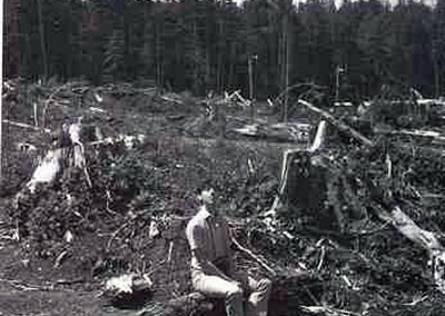 "Frank, the ""old country"" logger, reflecting on the beauty and majesty of clearcut logging in our beloved ""Clearcut Log Garden""  (taken in 1970 or 71 or something)"