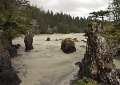 Beach with cool rock & tree formations (sea stacks)