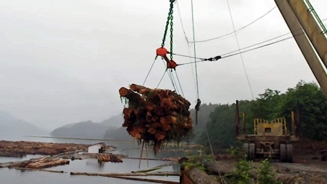 logging-a-frame-holberg2a